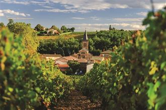 Colors of Provence (Wine Cruise) - 2021